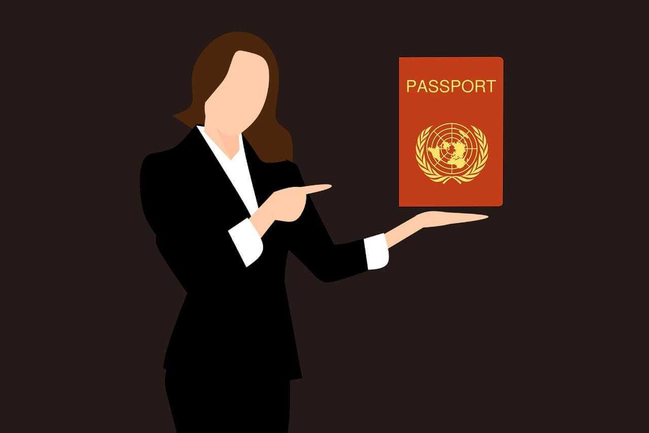 הנפקת דרכון זר לבעלי רקורד פלילי